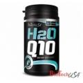 H2O Q10 60cps.