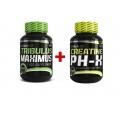 Tribulus Maximus 90tbl. + Creatine pH-X 90cps. ZDARMA